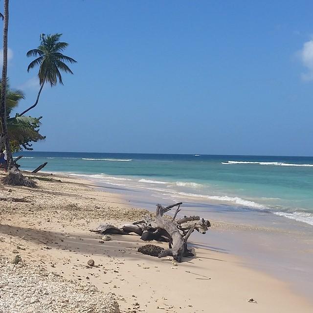 Månadens restips –Tobago