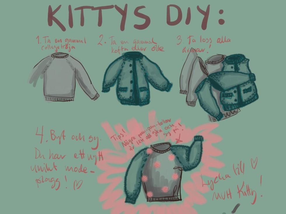 DIY tröja (002)